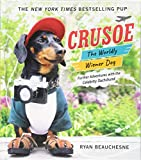 img - for Crusoe, the Worldly Wiener Dog: Further Adventures with the Celebrity Dachshund book / textbook / text book