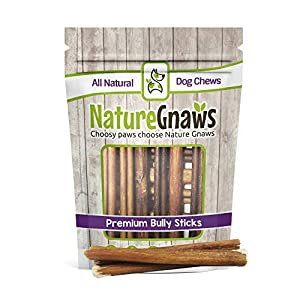 Nature Gnaws Small Bully Sticks - 100% Natural Grass-Fed Free-Range Premium Beef Dog Chews - Single Ingredient & Long Lasting Chew Treats for Dogs 19