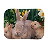 Royal Lion Baby Burp Cloth Spring Easter Bunny