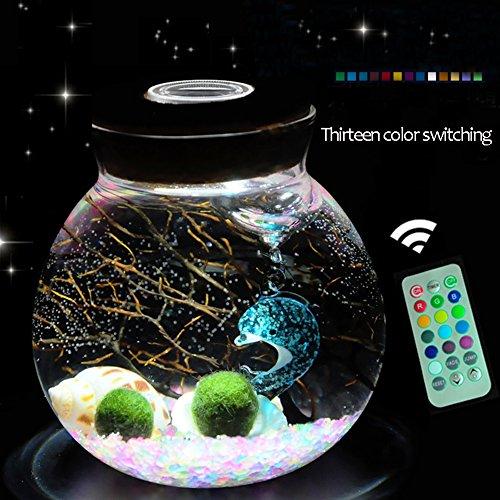OMEM christmas gifts for kids algae moss balls seed Glass jar Aquarium terrarium Kit (Two year old, Seven colors)