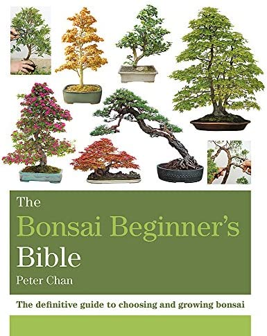 The Bonsai Beginner S Bible Chan Peter 9781784723699 Amazon Com Books
