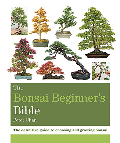The Bonsai Beginner