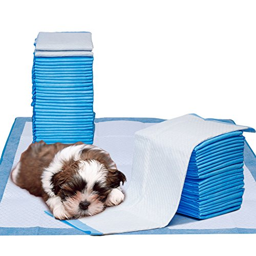 Petphabet 64 Count Puppy Pads 18 by 24 Inches,Dog Training Potty Pee Pads ()