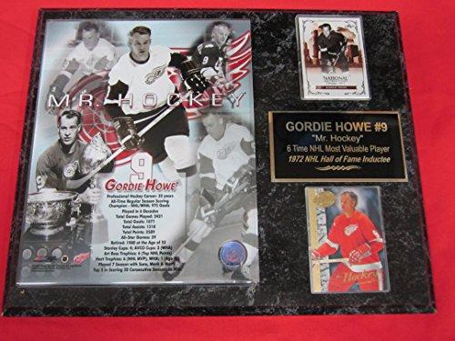 Gordie Howe Detroit Red Wings 2 Card Collector Plaque w/8x10 Photo CAREER ()