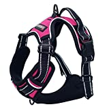 No Pull Pet Harness Front Range Dog Harness Adjustable Outdoor Pet Vest 3M Reflective Oxford Material Vest for pink Dogs Easy Control for Small Medium Large Dogs (XL) BARKBAY