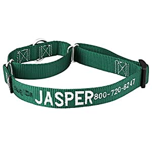 Hunter Green Embroidered Martingale Dog Collars - Customized with Your Dog's Information - 1 Inch x 13-18 Inches