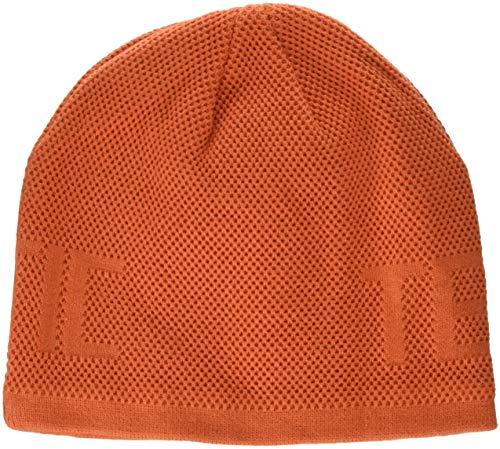 (Arctic Cat Unisex Adult Beanies & Knit Hats Orange One Size)