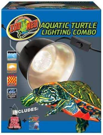 Box Turtle Food