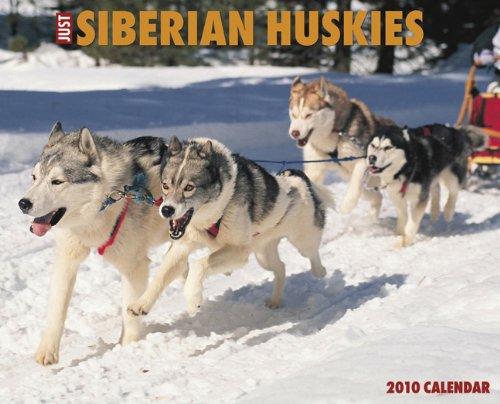 (Just Siberian Huskies 2010 Calendar)