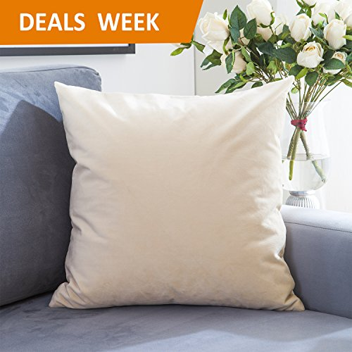 Home Brilliant Solid Square Euro Pillow Sham Decorative Cushion Cover For Floor/Office/Car/Travel, Ultra Soft, 24