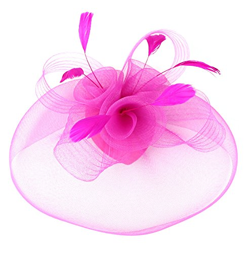 Urban CoCo Women's Elegant Flower Feather and Veil Fascinator Cocktail Party Hair Clip Hat (Rose)