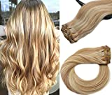 Remy Clip in Hair Extensions Human Hair Clip in
