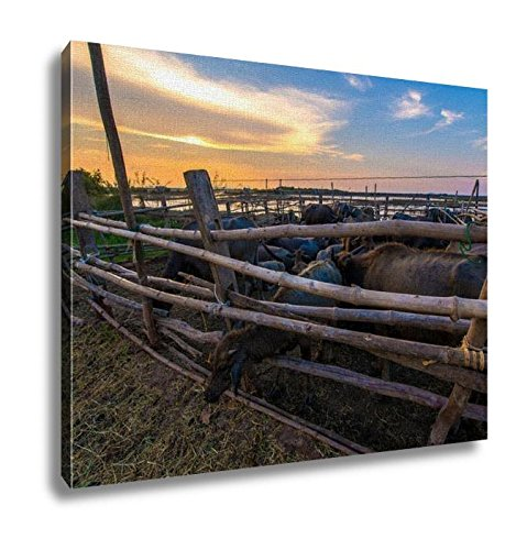 Ashley Canvas, Thailand Buffalo In Corral At Sunset, Home Decoration Office, Ready to Hang, 20x25, AG6343378 by Ashley Canvas
