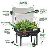 Vegepod - Raised Garden Bed - Self Watering