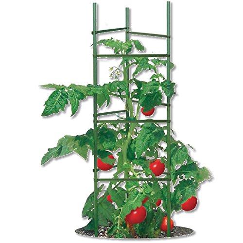 (6) ea Woodstream Gardeners Blue Ribbon TMC60 Ultomato Ultimate Tomato Cage Supports