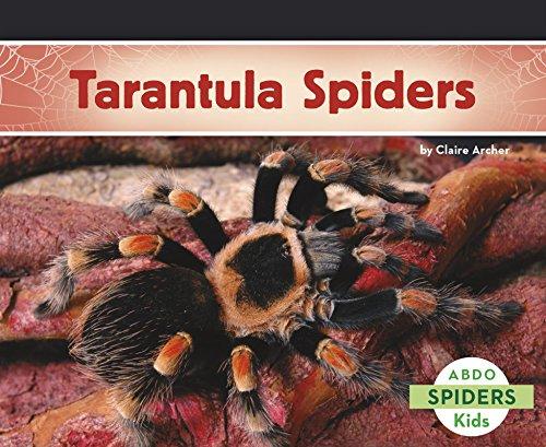Tarantula Spiders ()
