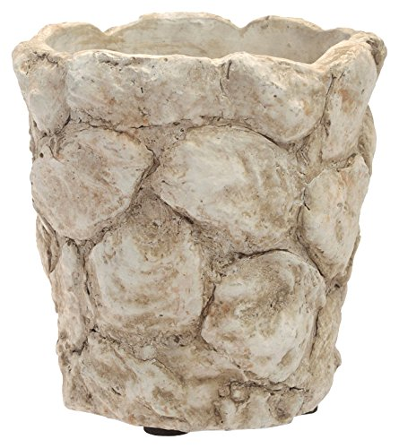 Boston International Oyster Shell Cachepot, 4-Inch
