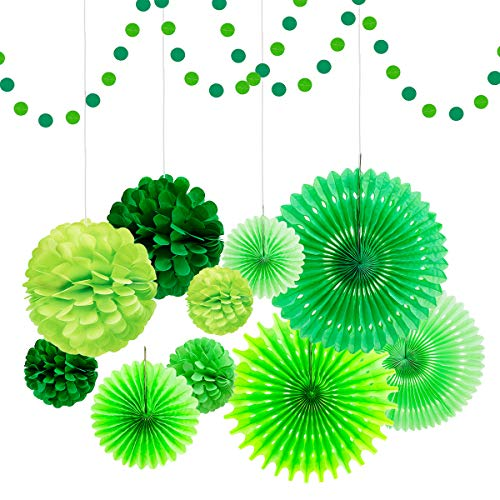 - Party Hanging Paper Fan Decorations, Tissue Pom Pom Flowers Honeycomb Ball Circle Dot Garland for Birthday Baby Shower Easter Green Paper Fan Party Decorations Spring and Irish Party Supplies ...