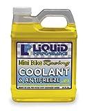 Liquid Performance Racing Coolant and Anti-Freeze - 64oz. Mini Bike 0198