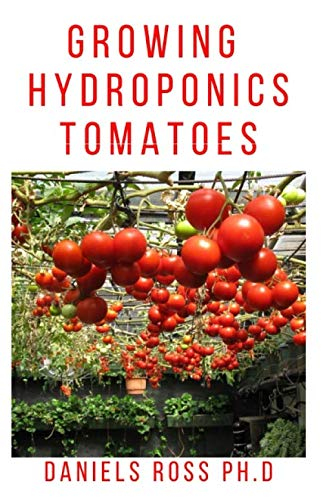 GROWING HYDROPONIC TOMATOES: Everything you need to know about growing tomatoes hydroponically.