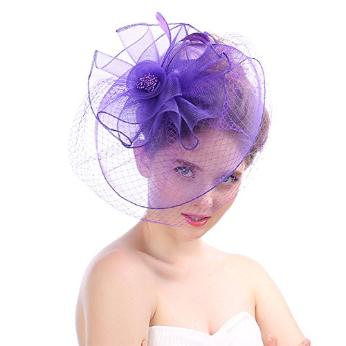 Women's Fascinator Hat Feather Hair Clip Party Hat Flower Kentucky Derby Headband Hats with Veil for Wedding Church Cocktail Purple for $<!--$13.99-->