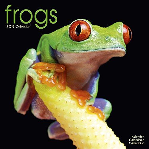 Frog Calendar - Cute Animal Calendar - Calendars 2017 - 2018 Wall Calendars - Animal Calendar - Frogs 16 Month Wall Calendar by Avonside