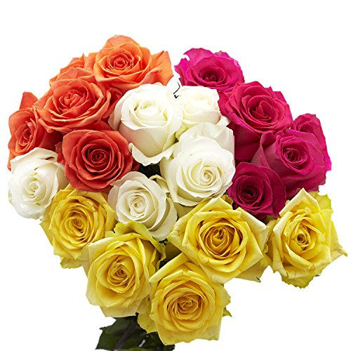 GlobalRose 50 Assorted Color Roses- 2 Beautiful Colors- Express Flower Delivery (Roses Stem Long Assorted)