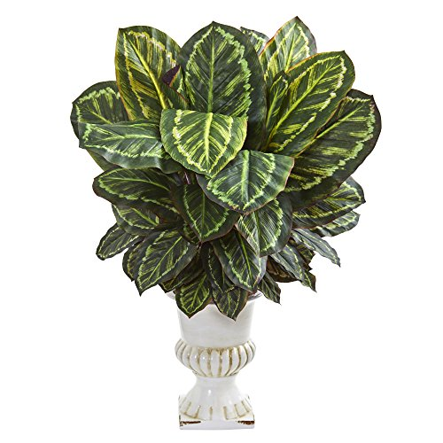 Nearly Natural 8171 Maranta Artificial White Urn Silk Plants Green