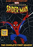 The Spectacular Spider-Man: Season 1