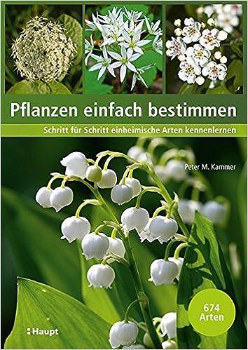 pflanzen einfach bestimmen schritt fur schritt einheimische arten kennenlernen amazon de peter m kammer bucher