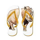 CafePress Rhino Rhinoceros Animal - Flip Flops, Funny Thong Sandals, Beach Sandals
