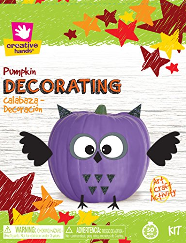 Creative Hands Pumpkini Deco Owl Decorations