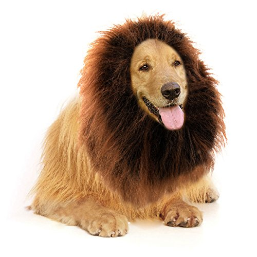 Lion Mane For Dog Costume (Furryfido Lion Mane -Lion Wig for Medium to Large Sized Dogs with Ears plus Gift [Lion Tail] Lion Wig for Dog— Halloween party fancy costume - Complementary Lion Mane for Dog Costumes (light Brown))
