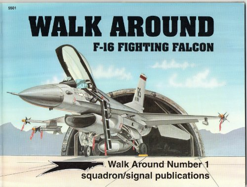 F-16 Fighting Falcon - Walk Around No. 1 for sale  Delivered anywhere in USA