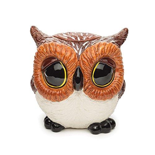 Big Sky Carvers Owl Cookie Jar