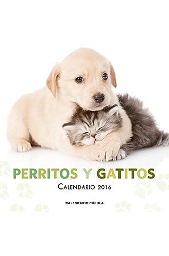 Calendario Perritos Y Gatitos 2016