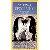 National Geo.:Antarctic Wildli