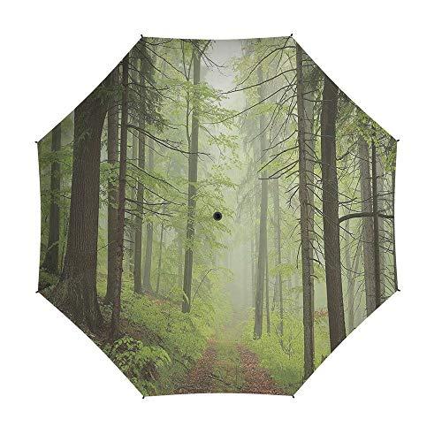 Alder Chair Outdoor (Umbrellas Compact Travel Umbrella Auto Open Close,Outdoor,Auto Open Close Umbrella 42 Inch,Trail Trough Foggy Alders Beeches Oaks Coniferous Grove Hiking Theme)