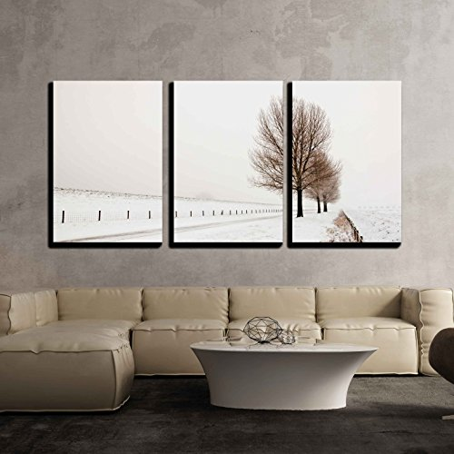 Row of large and bare trees It is very early in the morning x3 Panels