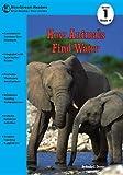 How Animals Find Water, Emily Dawson, 1622430085