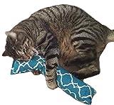 REFILLABLE 15'' Catnip Cat Kicker Toys/Kitty Kick Sticks/Cat Kick Stix (GREEN)