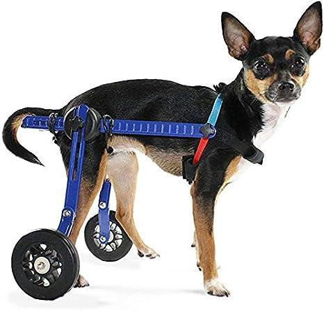 Ortocanis Silla de Ruedas para Perros de Menos de 4kg