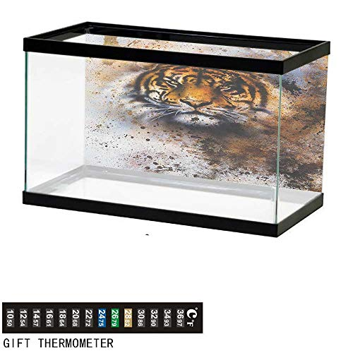 (Jinguizi TigerFish Tank BackdropWild Beast Looking Straight into The Eyes of The Viewer Angry Looking Panthera Tigris36 L X 20