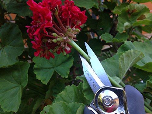 Gardenite Ultra Snip Pruning Shear