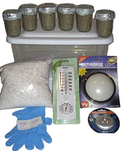 Maximumstore - Simple Mushroom Growing Kit - 6 Jars Grow Mushrooms Fast!