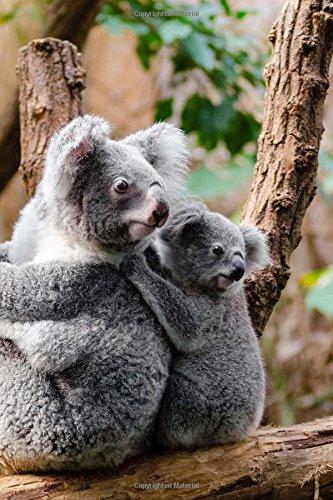 Download Two Australian Koala Bears Journal: 150 Page Lined Notebook/Diary PDF