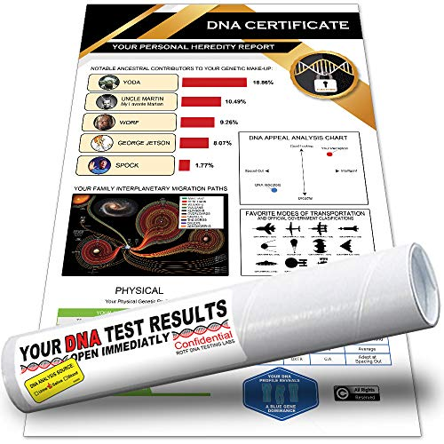 Giftable Invisibles Funcestry Hilarious DNA Results with King Kong / Big Foot Ancestry. Includes Genetic Make-up, Migration Map, Physical, Behavioral & More. Packaged in mailing Tube. (3 Pack)