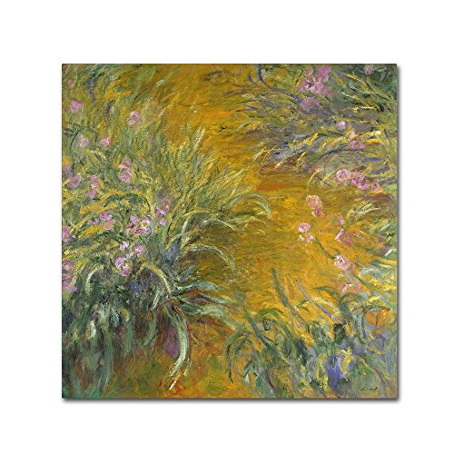 Claude Monet Irises (The Path through the Irises by Claude Monet, 18x18-Inch Canvas Wall Art)