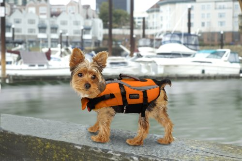 Outward Hound Dog Life - 8