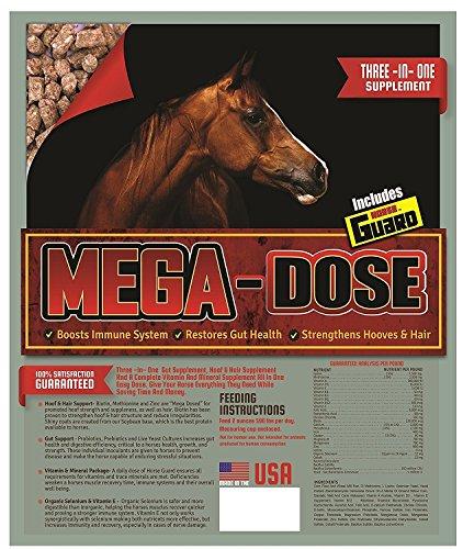 Horse Guard Mega Dose Equine Vitamin Mineral Hoof & Probiotic Supplement, 40 lb by Horse Guard (Image #6)